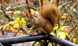 Harmonogram jesiennych szkoleń już dostępny